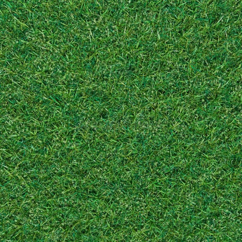абстрактный взгляд текстуры парка лужайки зеленого цвета травы города предпосылки бесплатная иллюстрация