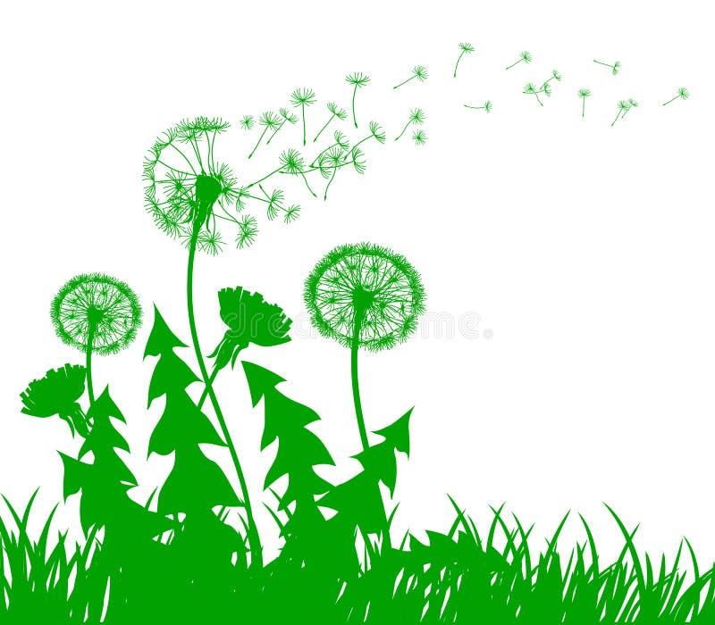 Абстрактный зеленый одуванчик с семенами летания - вектор иллюстрация вектора