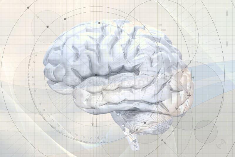 абстрактный мозг предпосылки иллюстрация вектора