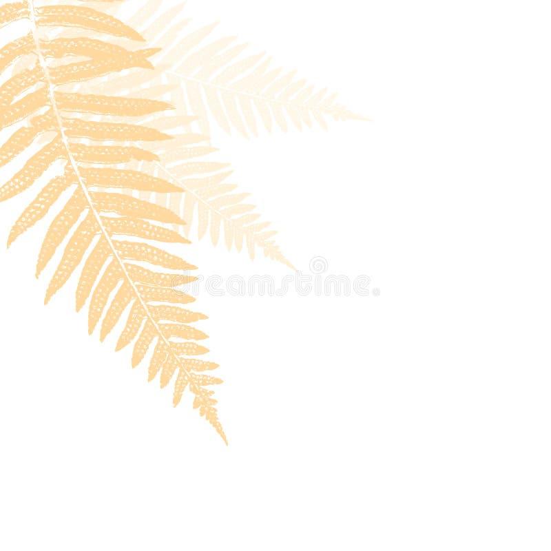 абстрактный папоротник элемента иллюстрация штока