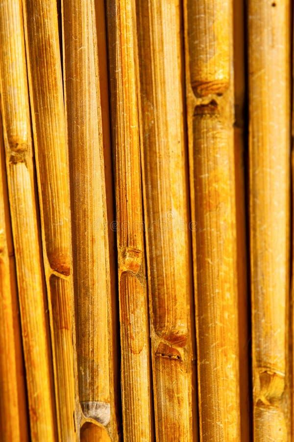 Абстрактный перекрестный бамбук в kho виска южном стоковое фото rf