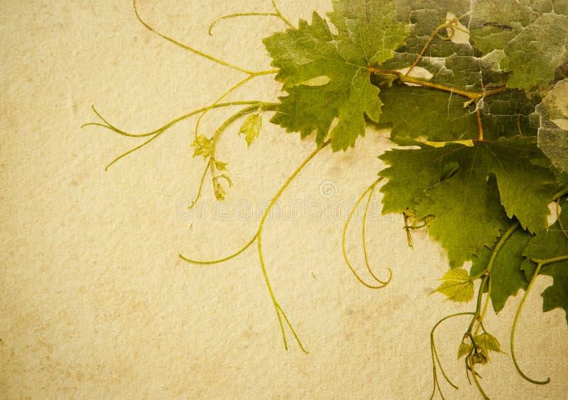 абстрактный сбор винограда типа предпосылки иллюстрация вектора