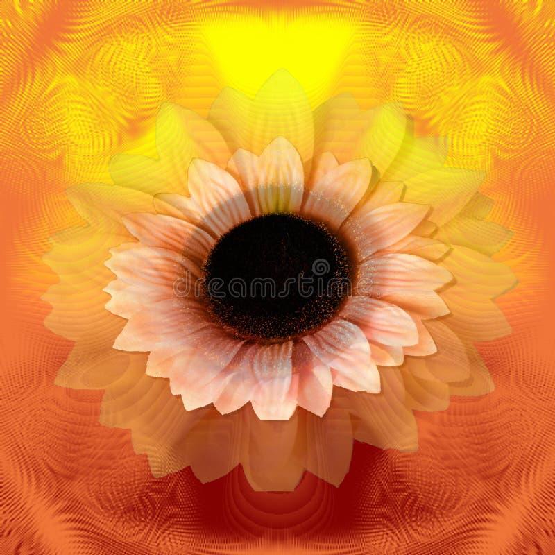 абстрактный солнцецвет стоковая фотография