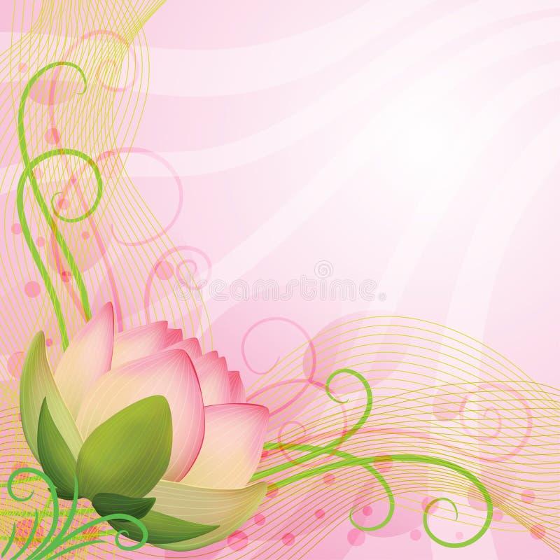 Абстрактный цветок лотоса пинка предпосылки стоковые фото
