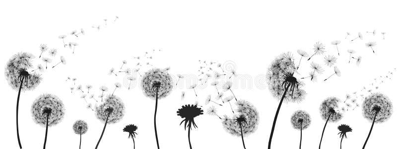 Абстрактный черный одуванчик, одуванчик с иллюстрацией семян летания иллюстрация вектора