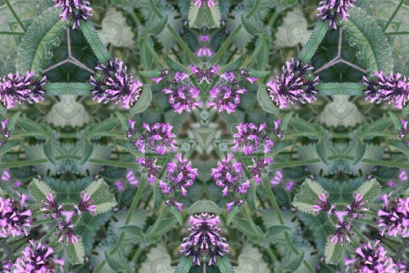 абстрактный kaleidoscope предпосылки Красивая multicolor текстура калейдоскопа Уникально и неподражаемый дизайн Геометрическое си стоковая фотография