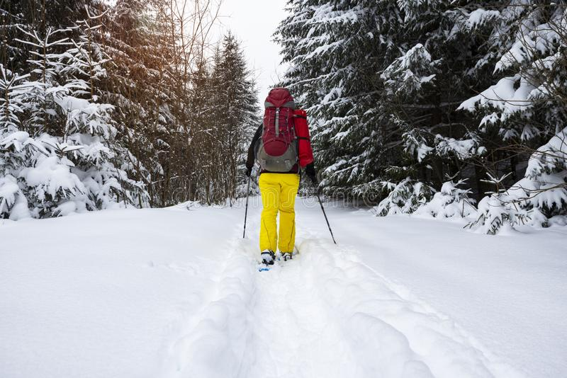 Авантюрист, с большим рюкзаком, идет в snowshoes стоковое фото