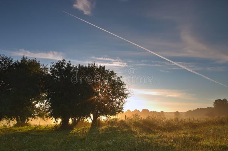 Download августовское утро стоковое фото. изображение насчитывающей полет - 489254