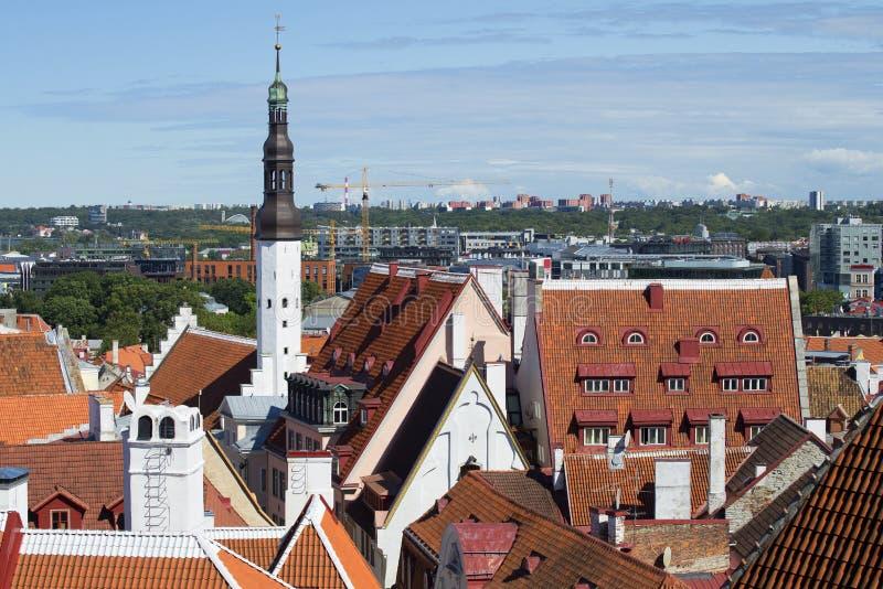 Август над крышами старого Таллина стоковая фотография rf