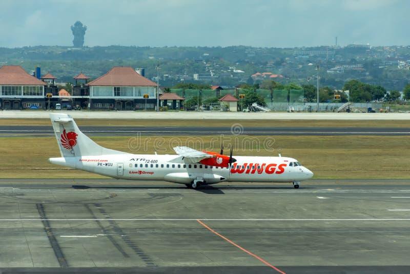 Авиакомпании крыльев стоковое фото rf