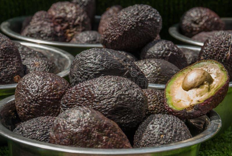 Авокадоы Одно из их раскрыто что камень и пульпа видимы стоковое изображение rf
