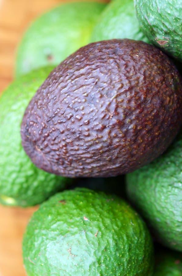 Авокадоы стоковое изображение rf