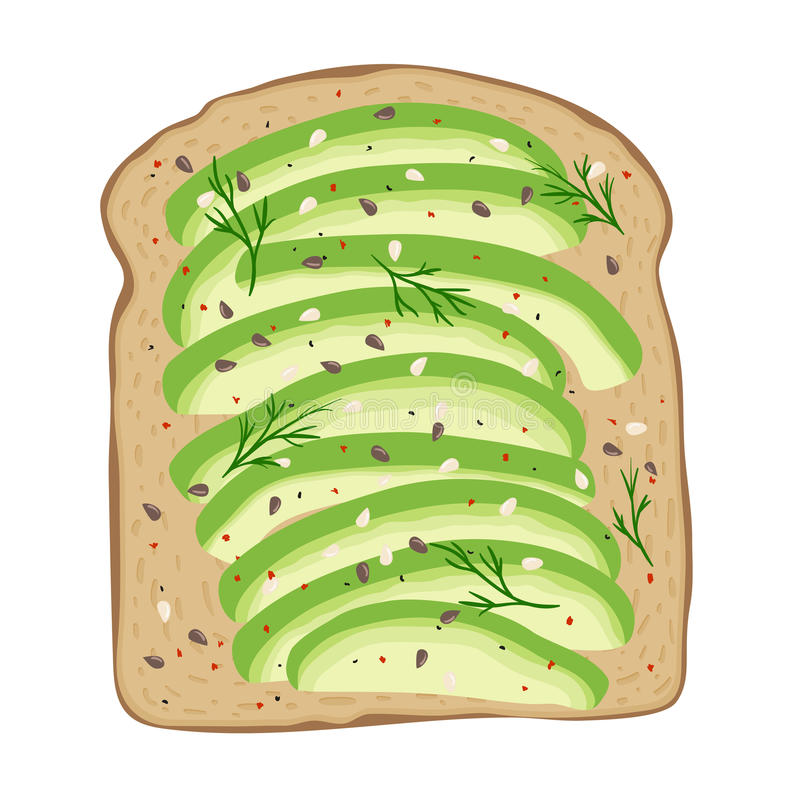 Авокадо на хлебе здравицы Очень вкусный сандвич авокадоа также вектор иллюстрации притяжки corel бесплатная иллюстрация