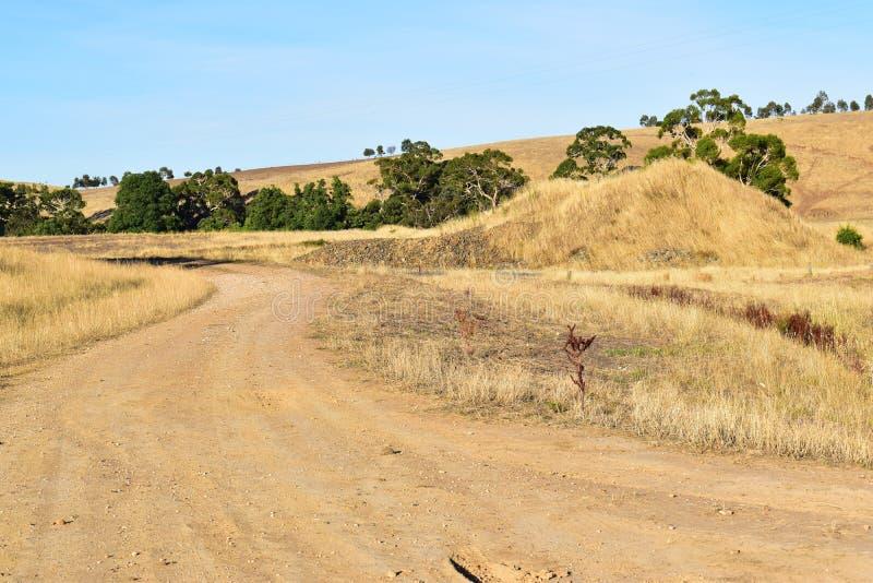 Австралиец Полу-засушливый в Виктория, золотой красоте стоковые фотографии rf
