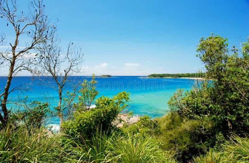 австралийская береговая линия стоковая фотография rf