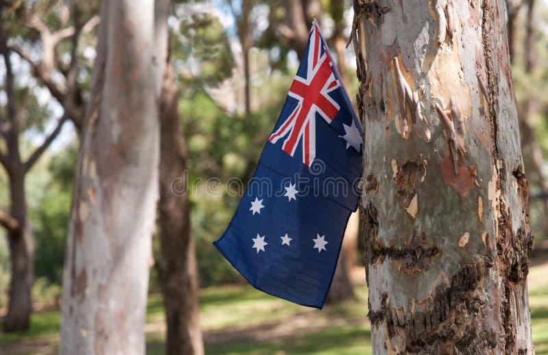 Download австралийские валы флага стоковое изображение. изображение насчитывающей фотоснимок - 18382081