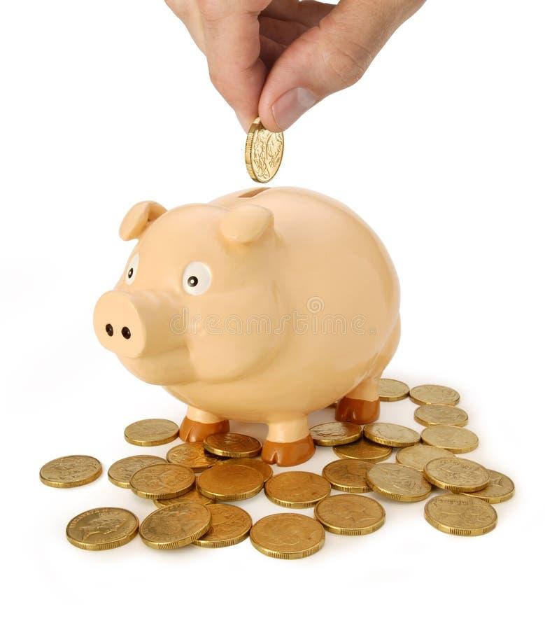 австралийские сбережения дег банка piggy стоковые фотографии rf