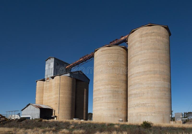 Австралийские сельские конкретные силосохранилища зерна стоковое изображение rf