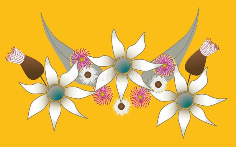 австралийские цветки родние иллюстрация штока