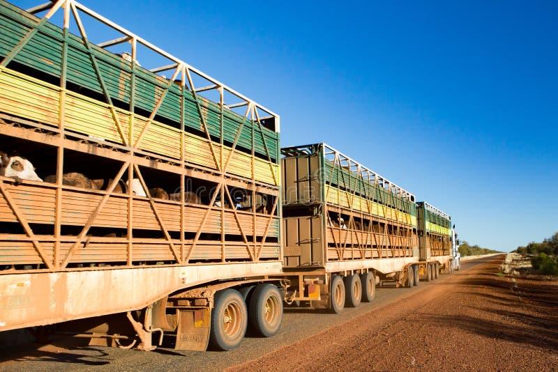 Австралийский поезд дороги стоковая фотография rf