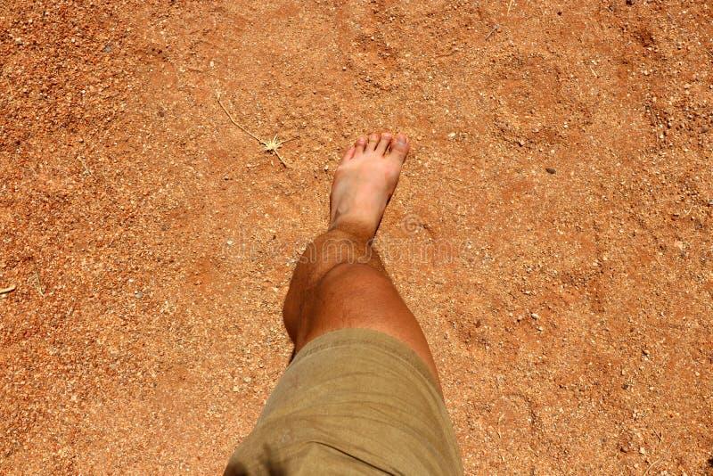 австралийское захолустье стоковая фотография rf
