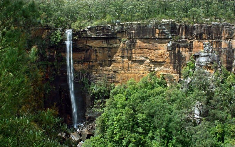 Австралия падает fitzroy nsw на юг стоковые фото