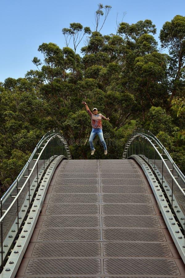 Австралия, WA, Перт, короли Парк стоковое фото