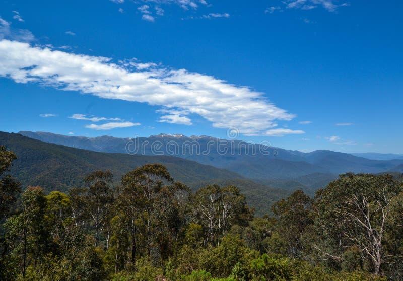 Австралийская высокая страна 1, национальный парк Mt Kosciusko, Новый Уэльс, Австралия стоковые фото