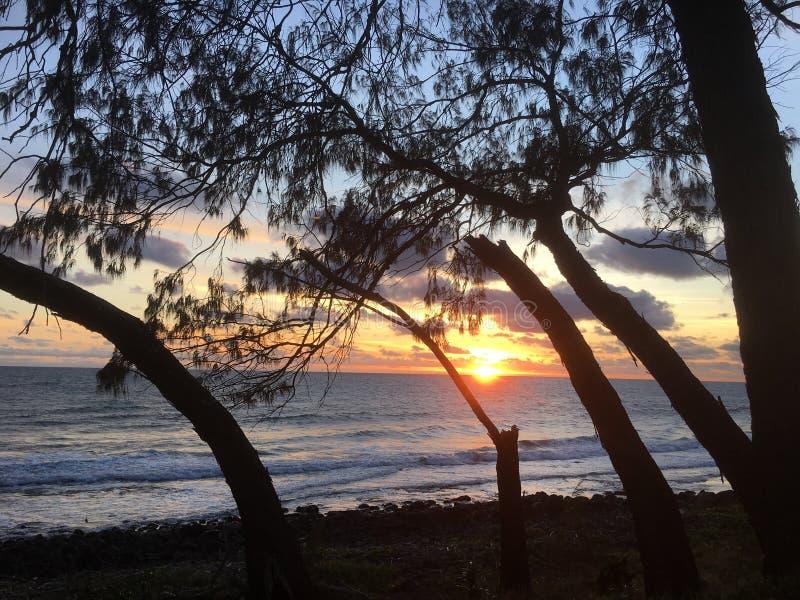 Австралийский восход солнца пляжа стоковые изображения rf
