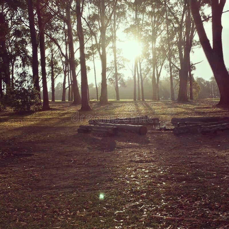 Австралийское восходящее солнце стоковые фото