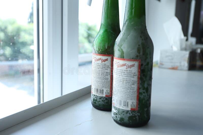 Австрийское пиво стоковая фотография rf