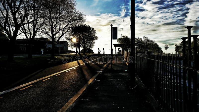Автобусная остановка с деревьями стоковое фото rf