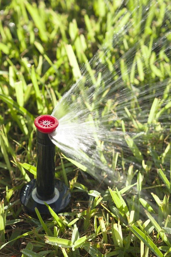Автоматические спринклеры травы и сада лужайки стоковая фотография