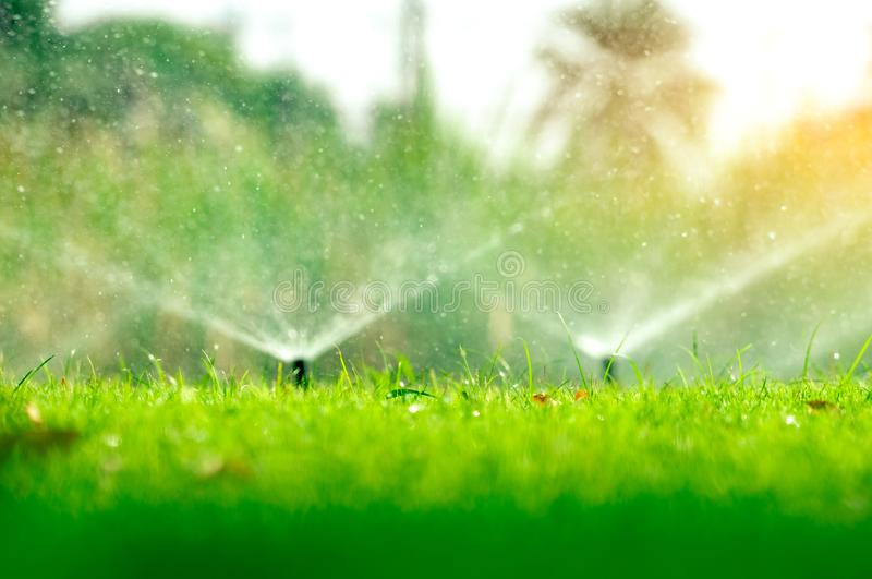 Автоматический спринклер лужайки моча зеленую траву Спринклер с автоматической системой Лужайка оросительной системы сада моча Во стоковая фотография