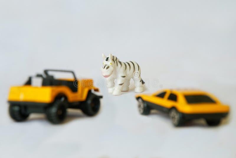 Автомобили около зебры стоковое фото rf