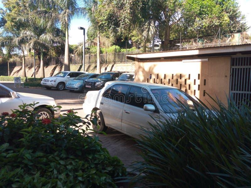 Автомобили офиса припарковали ожидать их пассажиров стоковое изображение rf