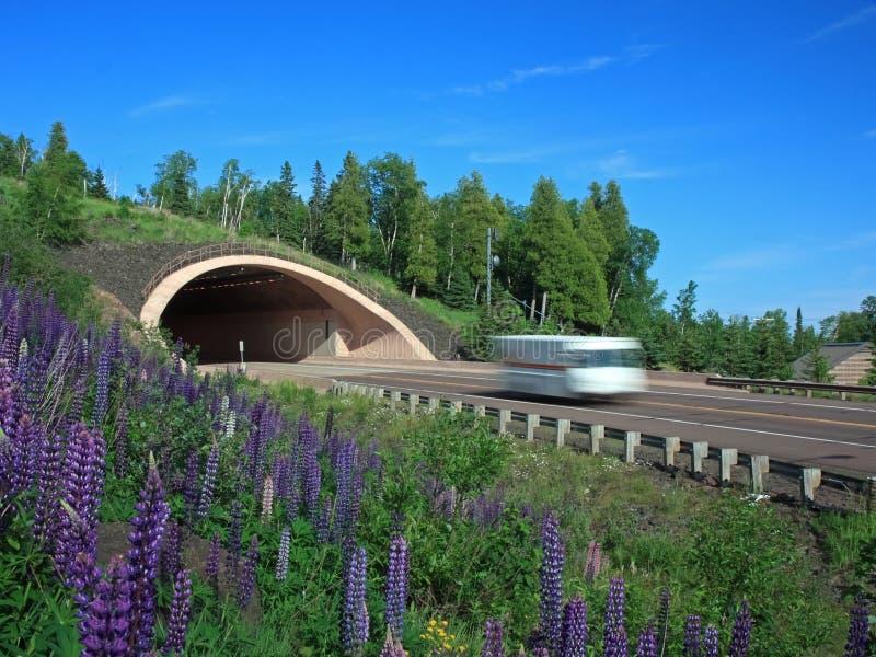 автомобиль двигая вне белизну тоннеля стоковое фото rf
