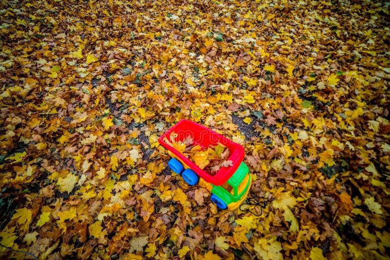 Автомобиль игрушки и предпосылка листьев падения стоковые изображения rf