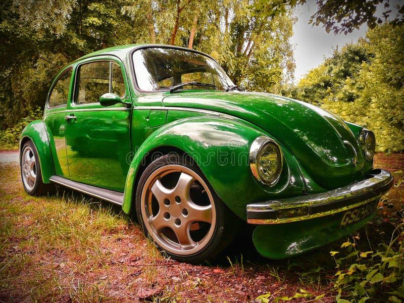 Автомобиль классики жука VW стоковые фотографии rf