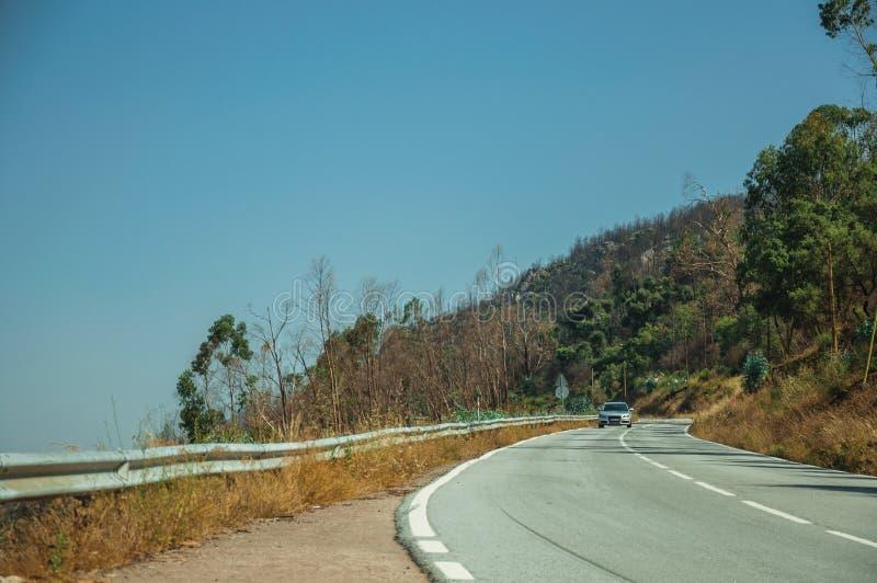 Автомобиль на дороге кривой через холмистый ландшафт стоковое изображение rf