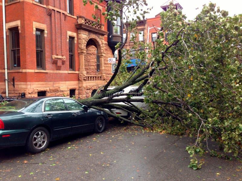 Автомобиль повредил ураганом Sandy стоковое изображение