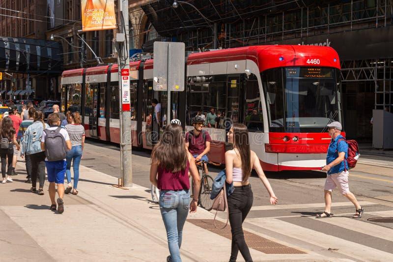 Автомобиль улицы в городском Торонто 2019 стоковые фотографии rf