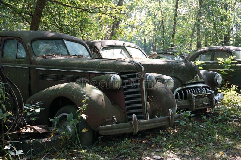 Автомобили Junkyard стоковая фотография