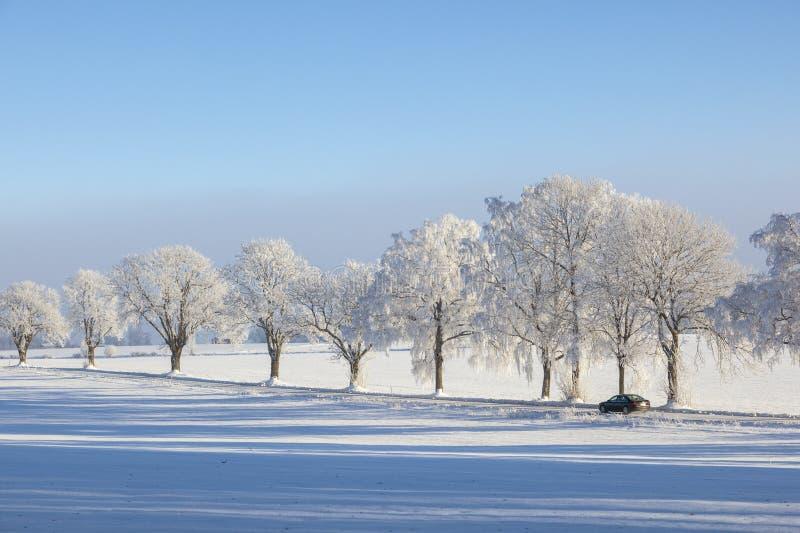 Автомобиль на дороге зимы стоковое фото