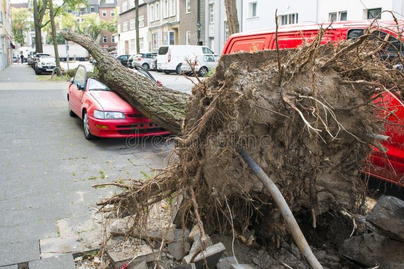 Автомобиль поврежденный ураганом