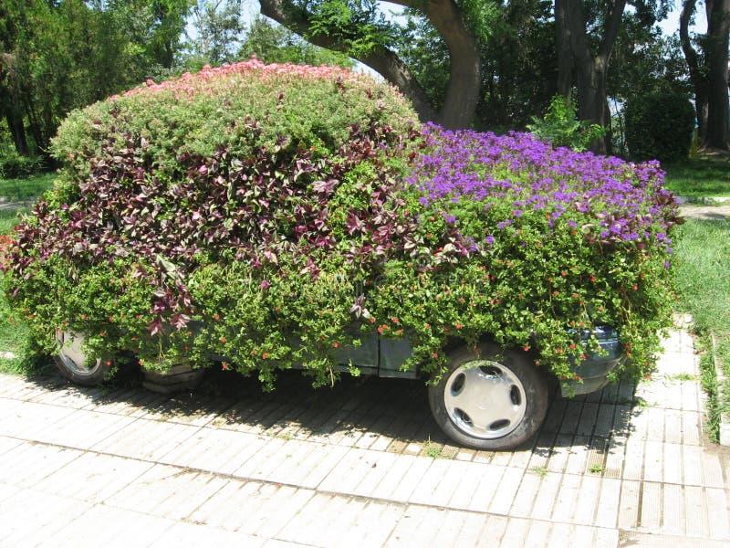 Автомобиль покрытый с зеленым цветом и цветками стоковые фотографии rf
