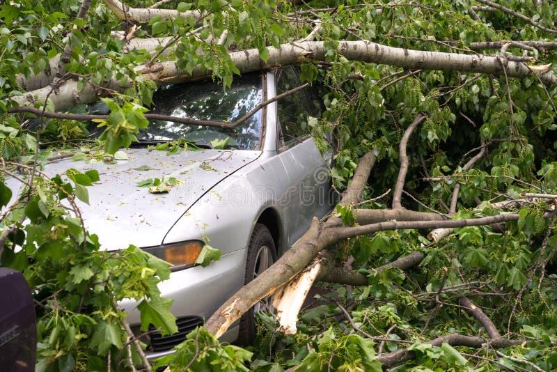 Автомобиль после урагана стоковое изображение rf