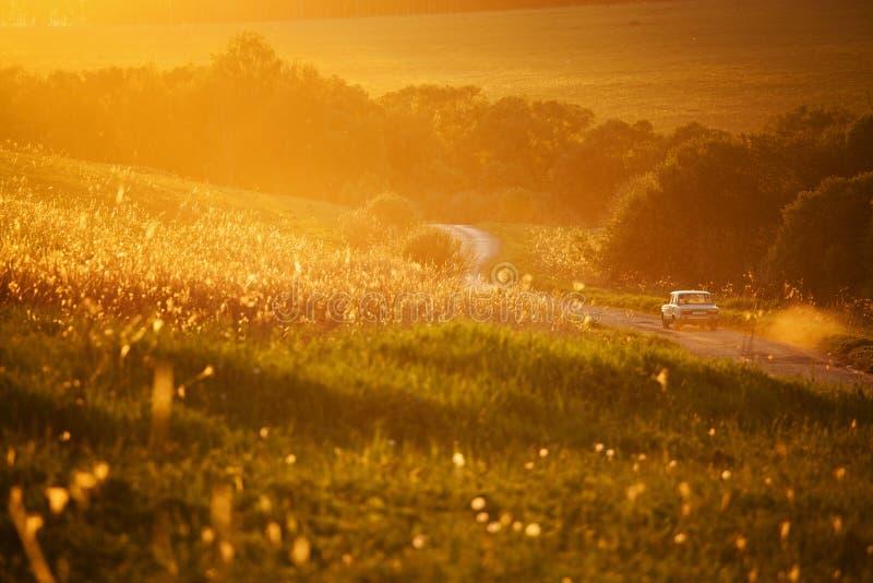 Автомобиль путешествуя на проселочной дороге среди полей стоковая фотография rf