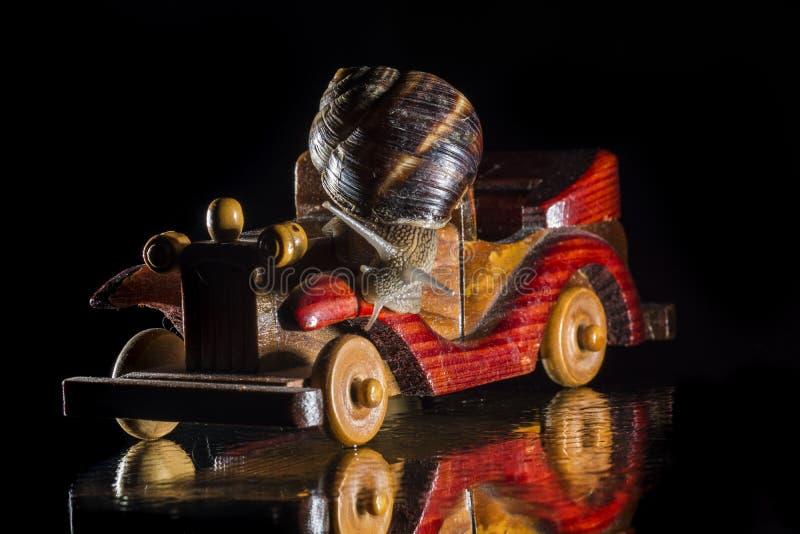 Автомобиль улитки и игрушки стоковое изображение