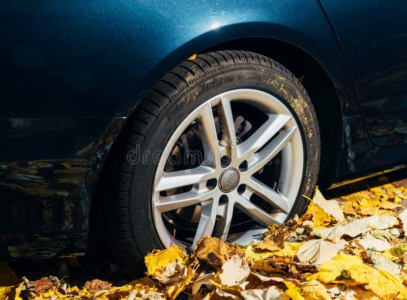 Автомобиль Alpin пилота Michelin в автошине листвы осени стоковые фото